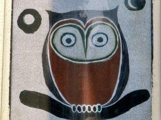 A startled owl.