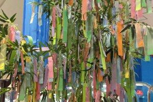 Дерево для пожеланий в Танабату