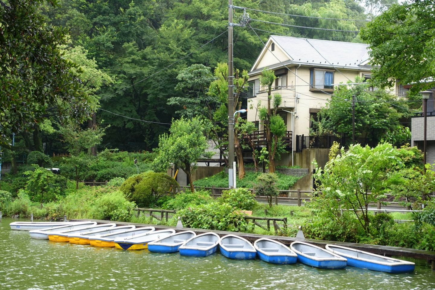 The boats of Zenpukuji Park