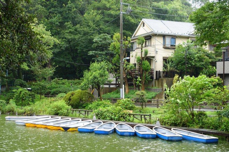 The boats of Zenpukuji Park