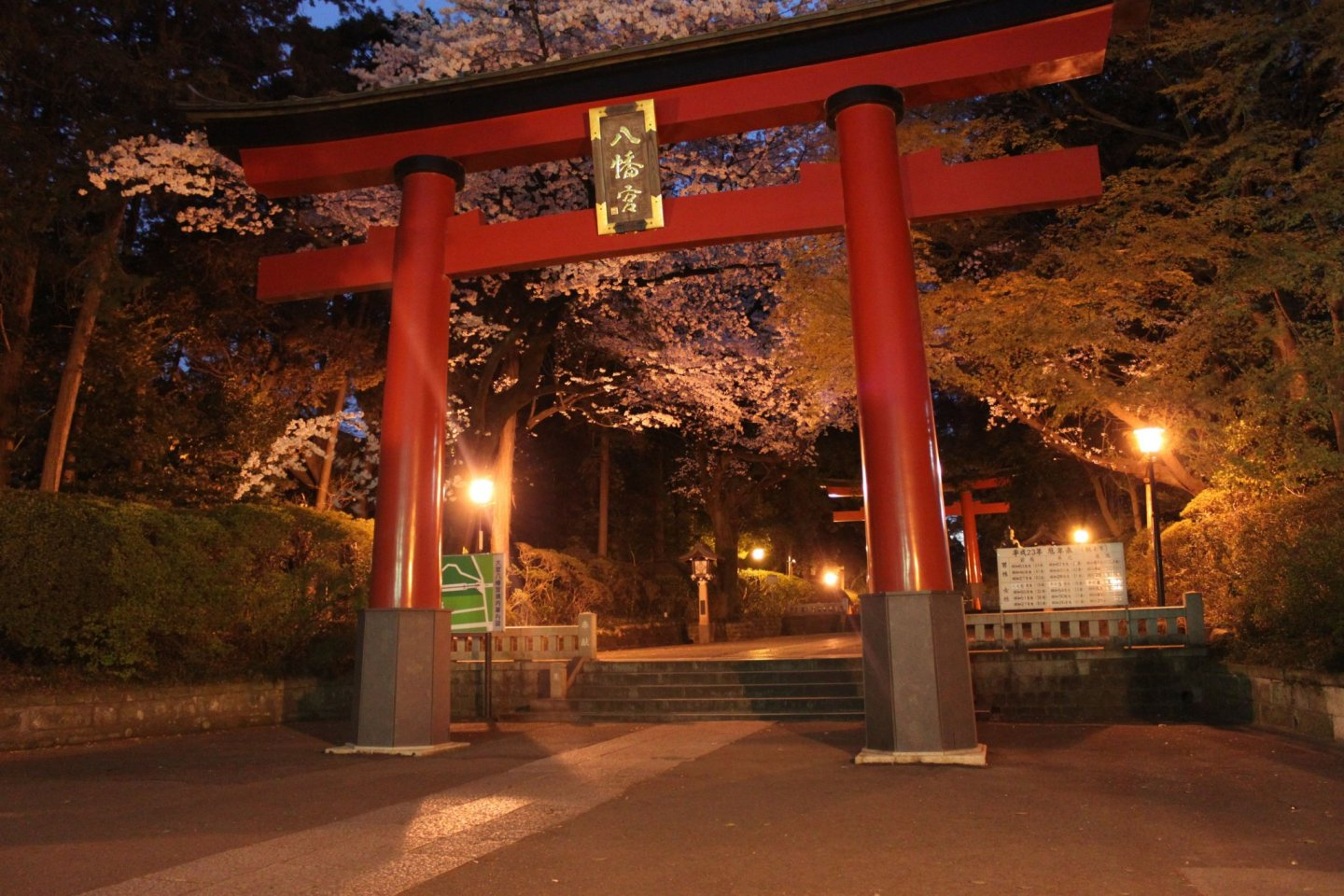 The torii gate of Omiya Hachimangu Shrine lit up at night