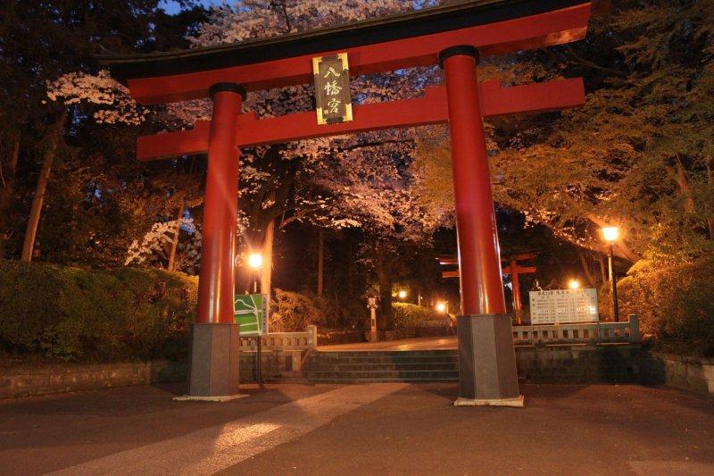 The torii gate of Omiya Hachimangu Shrine lit up at night