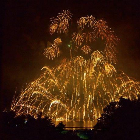 Lễ hội pháo hoa trên nước Miyajima [Đã hủy]