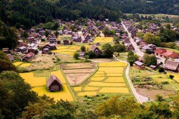 Shirakawa-go desde una colina