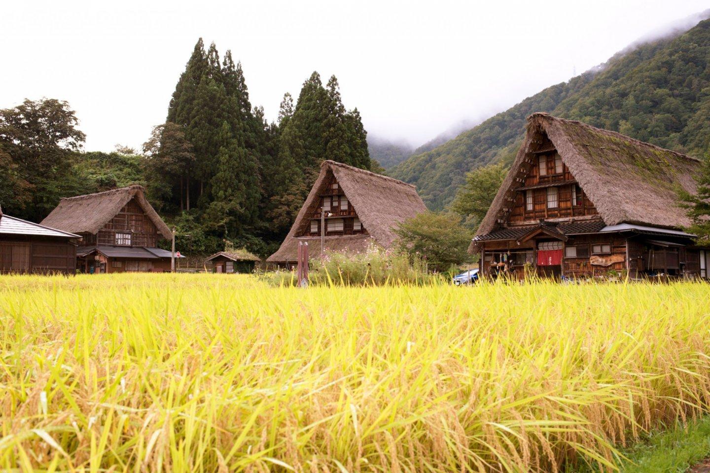El lado rural japonés entre Tokio y Osaka.
