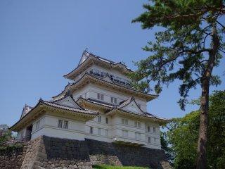 Du khách có thể xem toàn cảnh của Odawara từ đỉnh của thành. Trong khuôn viên cũng là một bảo tàng thông tin giải thích lịch sử của tòa thành