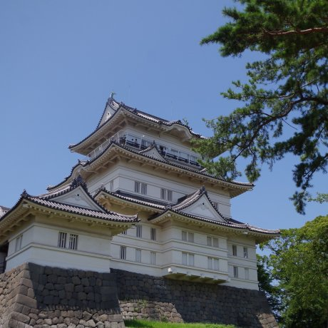 Odawara Castle in the Summertime