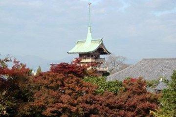 高台寺的枯山水