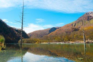 Taisho Pond และบรรยากาศรอบๆ