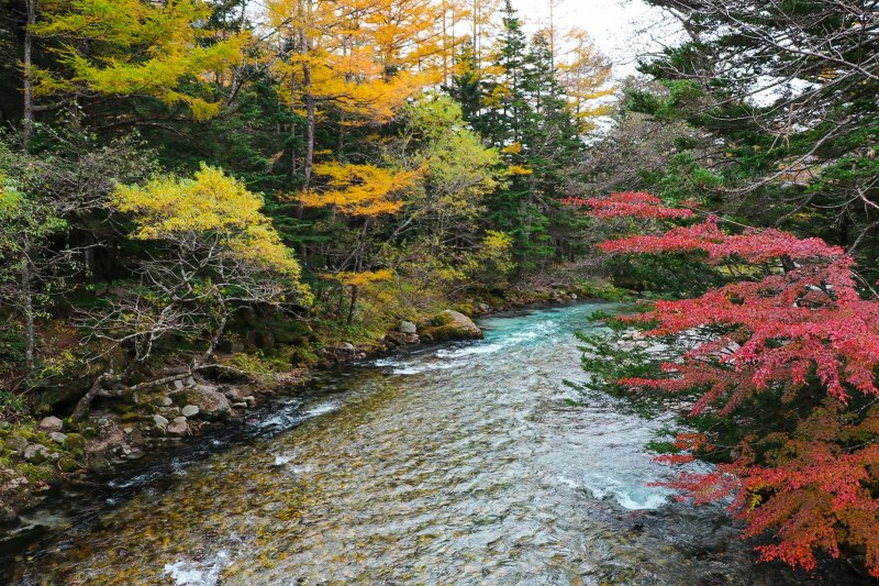 แม่น้ำ Azusa ในบรรยากาศของฤดูใบไม้เปลี่ยนสี