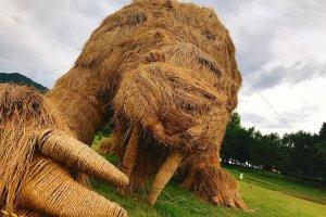 Last year's straw sculptures