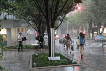 Typhoon hits Roppongi