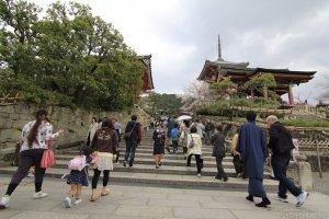 參拜世界文化遺產--清水寺