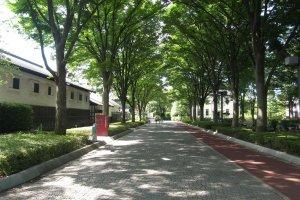 Kyodo no Mori Museum, Fuchu City