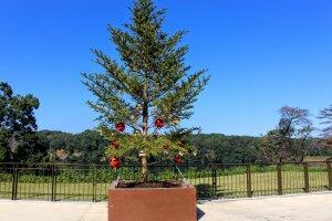 Metsa Village Christmas tree