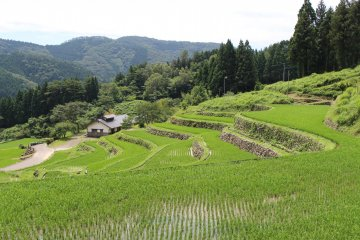 Senmaida rice fields at Kanzaiko