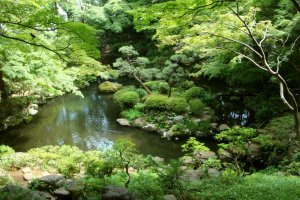 Tonogayato Garden, Kokubunji City