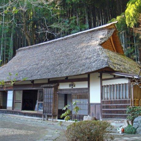 Tokyo's Hinode Town