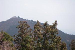 Mt. Hinode, Hinode Town