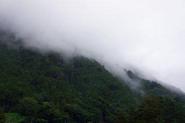 Verdant nature, Okutama Town