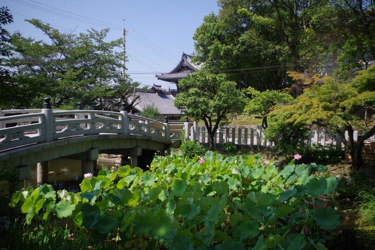 Okazaki-jinja and Konkaikomyo-ji