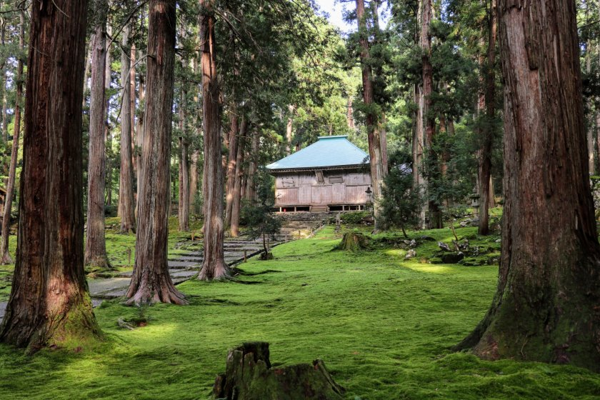 Carpet of moss leading up to the Haiden at Heisenji Hakusan Shrine