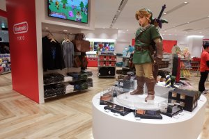 Link is guarding the store