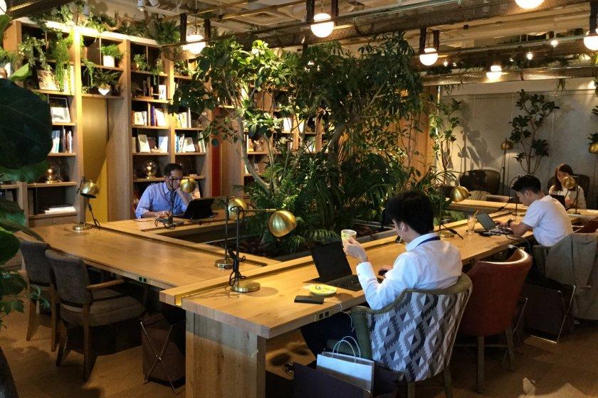 Park6\'s Open Desk