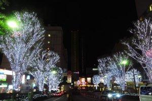 Улицы Оимати в ночной подсветке