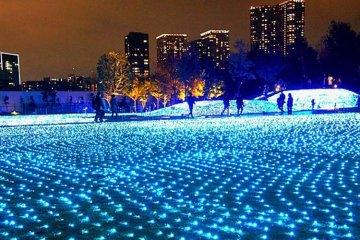 Illuminations at Shinagawa Season Terrace