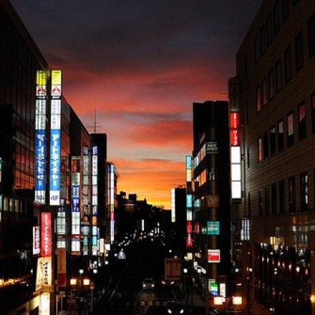 Kashiwa City Guide