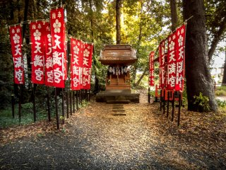 Although this shrine is officially known as Akiru Jinja, several other smaller shrines within this complex exist
