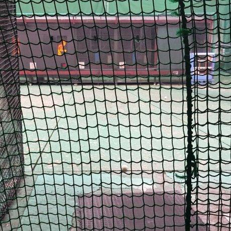 Chơi bóng chày ở Shinjuku