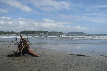 Побережье залива Сагами