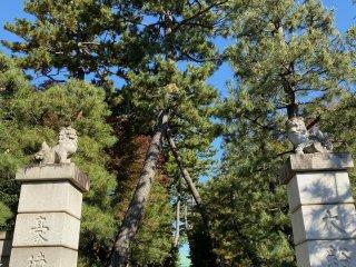Entrance to Gotokuji Temple