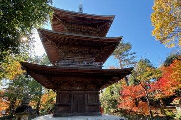 Three story pagoda at Gotokuji
