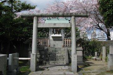 Синтоистский храм
