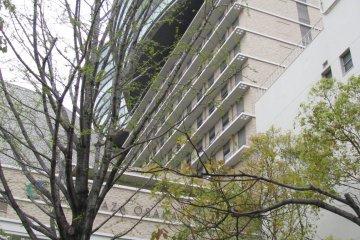 Отель Сити Плаза Осака