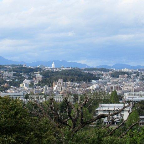 My Favorite Cities of Japan: Sendai
