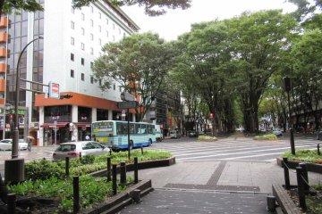 Моя любимая улица Дзёдзэндзи-дори
