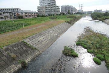 Район Яотомэ