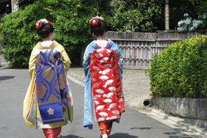 Грациозные майко в Киото