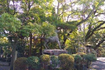 Ancient henro horse