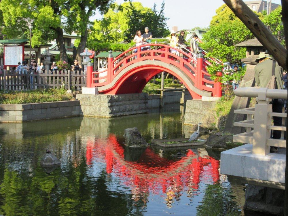 Радужный мост (Токио) — Википедия | 750x1000