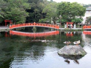 Fujisan Hongu Sengen Taisha, Fujinomiya