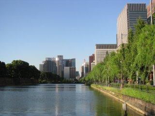 A fine day in Tokyo