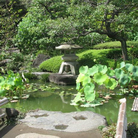 My Favorite Places of Japan: Gardens