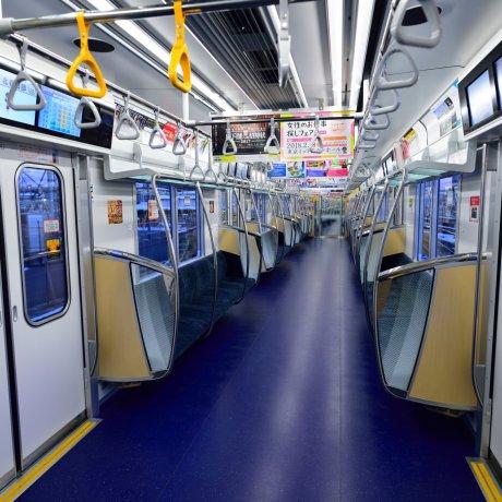 The Tokyo Metro Line