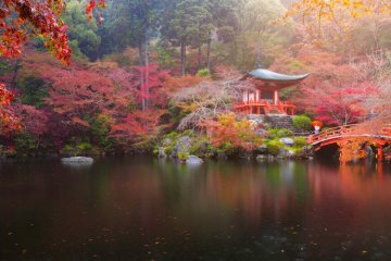 Autumn colours at the Benten Pond, Daigo-ji Temple