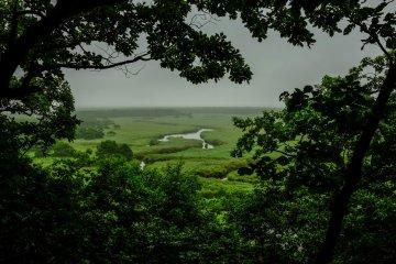 流經釧路濕原國立公園長條湖泊的美景